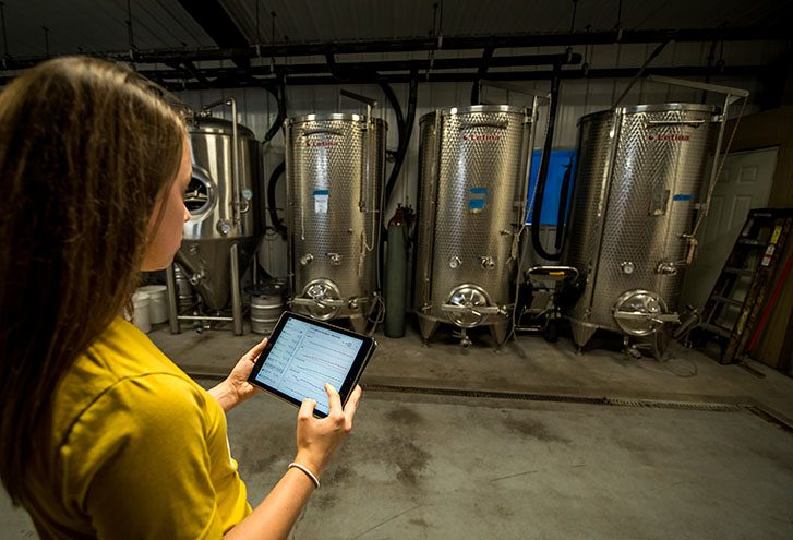 Woman using software to monitor wine production tanks