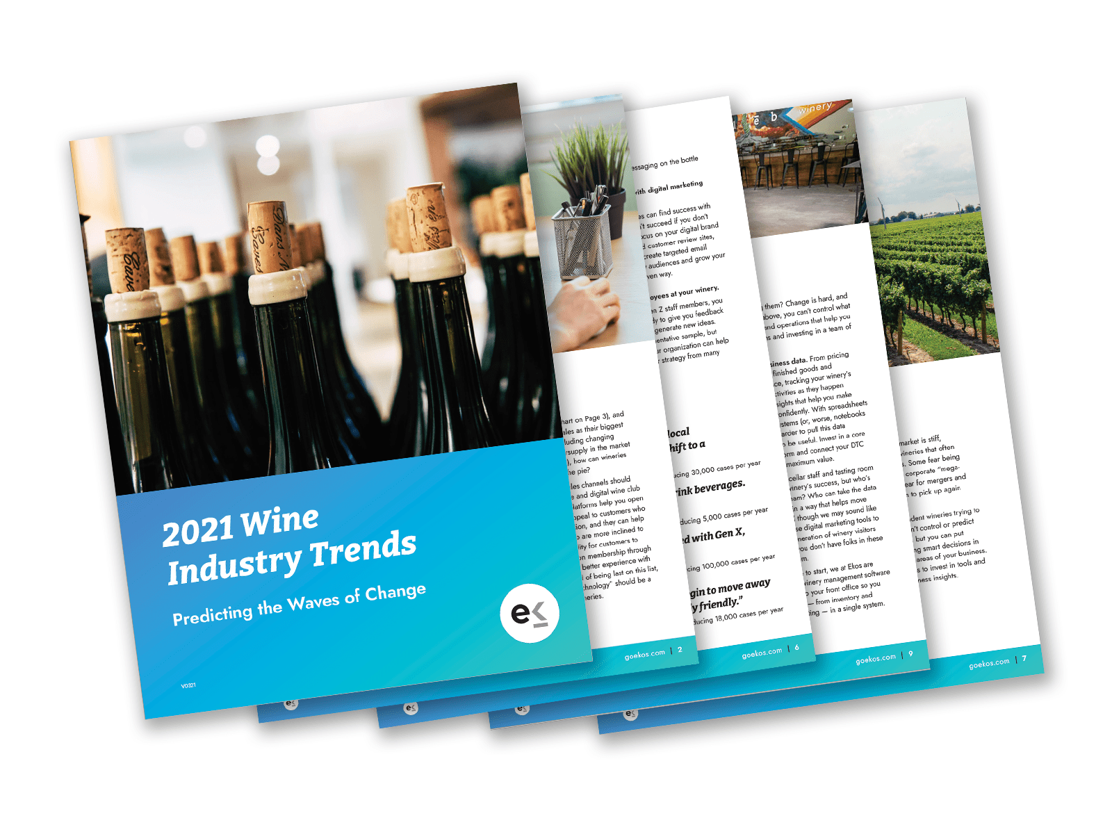 image of 2021 wine industry trends white paper
