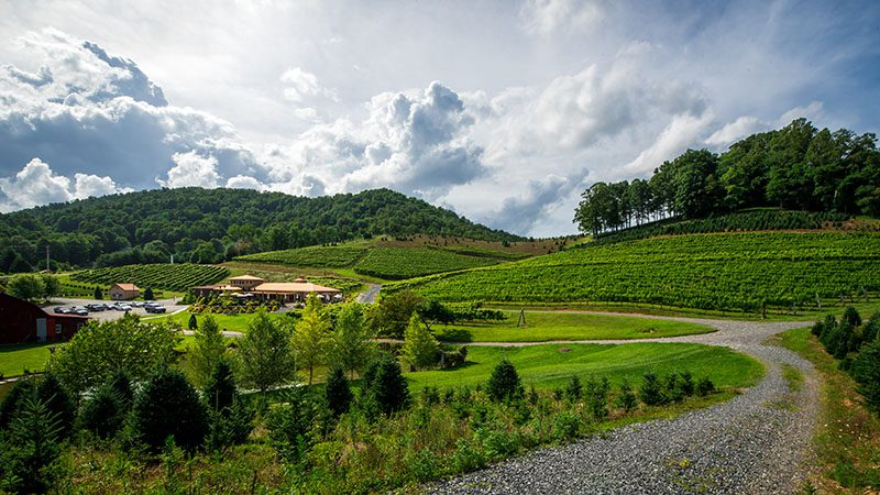 an image of a winery